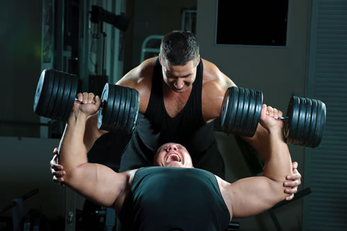 Increase testosterone for muscle building
